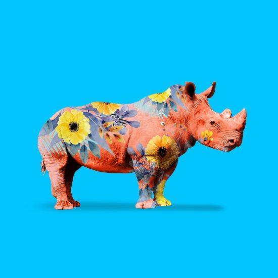 Jungle Rhino by Mook